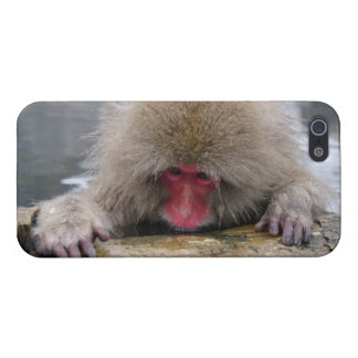 Lonely snow monkey in Nagano, Japan iPhone 5/5S Cases