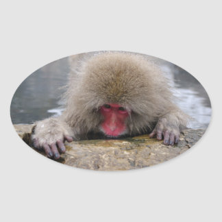 Lonely snow monkey in Nagano, Japan Sticker