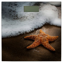 Lonely Starfish On The Beach Bathroom Scale