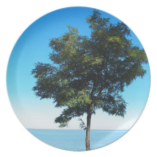 Lonely tree acacia on the shores of the sea dinner plate