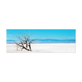 lonely tree at salton sea canvas print