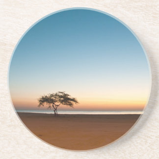 Lonely tree at sunrise in Kuwait Drink Coasters
