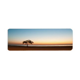 Lonely tree at sunrise in Kuwait Label