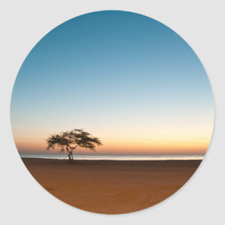 Lonely tree at sunrise in Kuwait Round Stickers