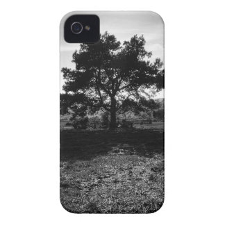 Lonely Tree Case-Mate iPhone 4 Case