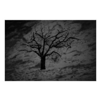 Lonely Tree Drawing Black N White Poster