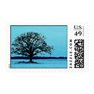 Lonely Tree in a Winter Landscape Postage