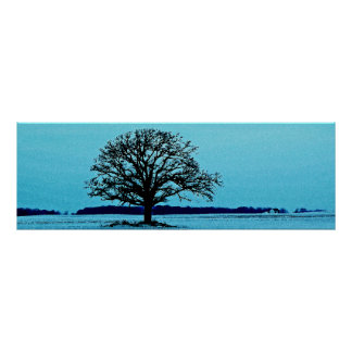 Lonely Tree in a Winter Landscape Poster