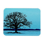 Lonely Tree in a Winter Landscape Vinyl Magnets