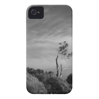 Lonely Tree iPhone case with card slot