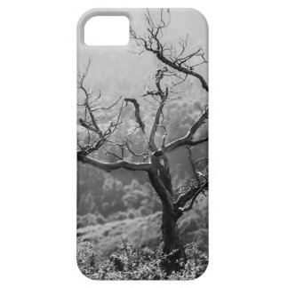 Lonely tree iPhone SE/5/5s case