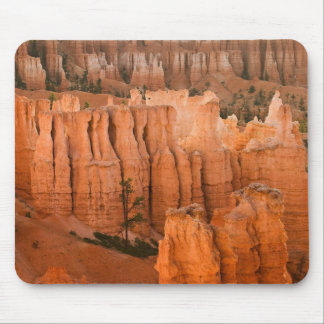 Lonely Tree Mouse Pad