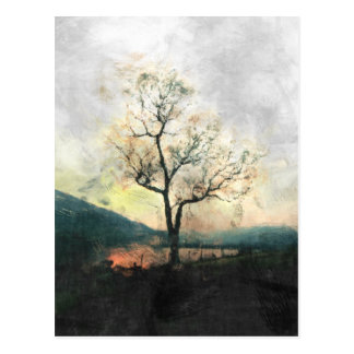 Lonely Tree Postcard