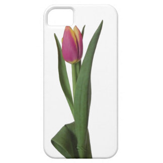 Lonely Tulip on White iPhone SE/5/5s Case
