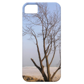 Lonely Winter Tree iPhone 5 Cover