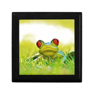 Lonesome Frog In The Grass Keepsake Boxes