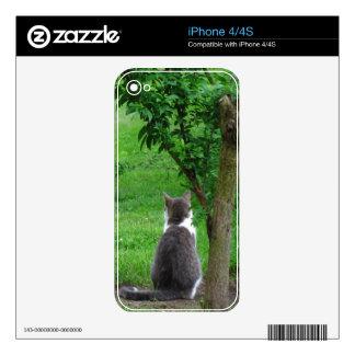 Lonesome Kitty iPhone 4 Skin