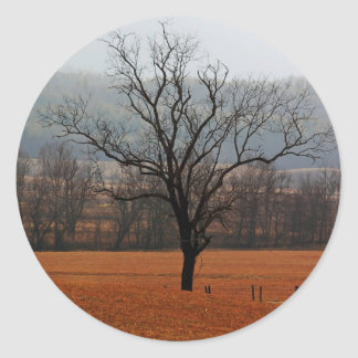 Lonesome Tree Classic Round Sticker