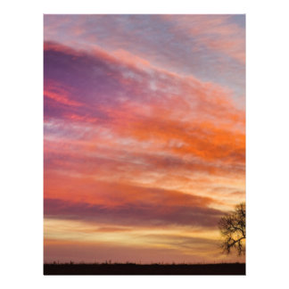 Lonesome_Tree_Sunrise.jpg Customized Letterhead