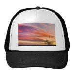Lonesome_Tree_Sunrise.jpg Mesh Hats