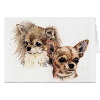 Long and smooth coat chihuahuas greeting card