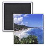 Long Bay, Port Antonio, Jamaica 2 Inch Square Magnet