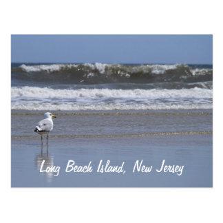 Long Beach Island NJ Postcard