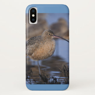 Long Billed Curlew iPhone X Case