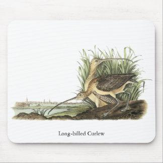 Long-billed Curlew, John Audubon Mouse Pad