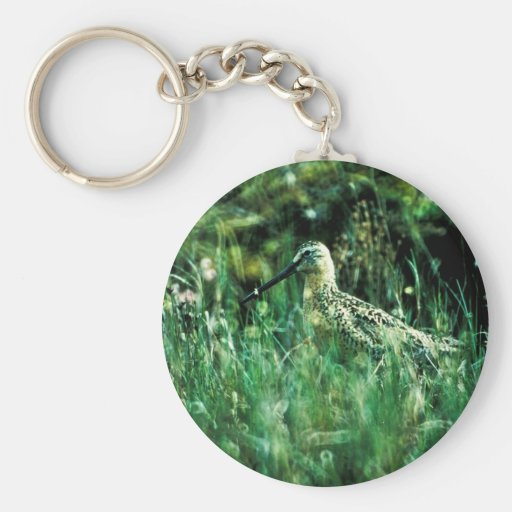 Long-billed Dowitcher Key Chain