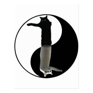 long cat yinyang postcard