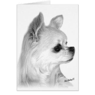 Long Coat Chihuahua card