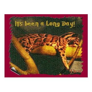 Long Day Postcard