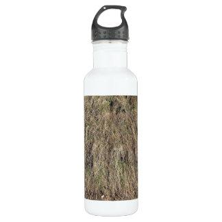 Long dead grass texture 24oz water bottle