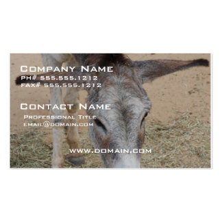 Long Eared Donkey Business Card Template