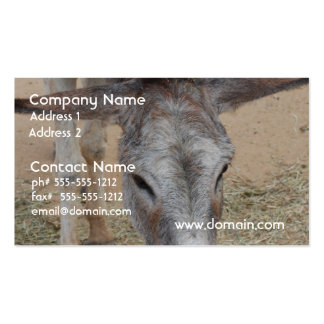 Long Eared Donkey Business Cards