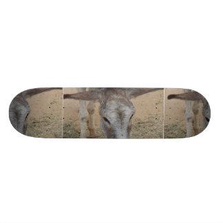 Long Eared Donkey Skate Board Deck