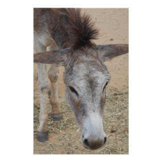 Long Eared Donkey Personalized Stationery