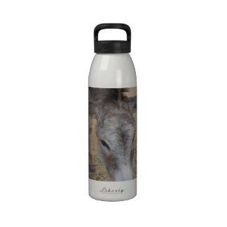 Long Eared Donkey Water Bottles