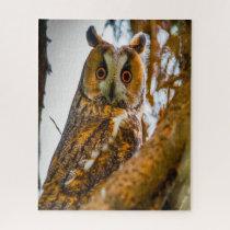 Long Eared Owl- Birds of Prey. Jigsaw Puzzle