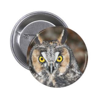 Long-eared Owl Button