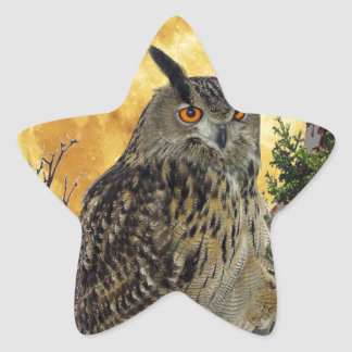 LONG EARED OWL BY MOONLIGHT STAR STICKER