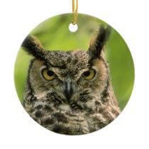 Long Eared Owl Ceramic Ornament