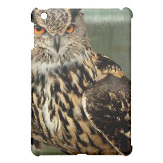 Long Eared Owl iPad Case