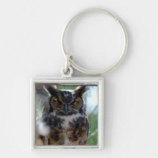 Long-Eared Owl Key Chain