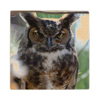 Long-Eared Owl Wood Coaster