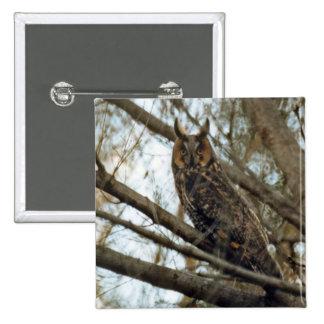 Long Eared Owl Photo Pinback Buttons