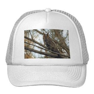 Long Eared Owl Photo Trucker Hat