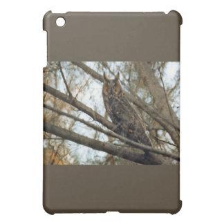 Long Eared Owl Photo iPad Mini Covers