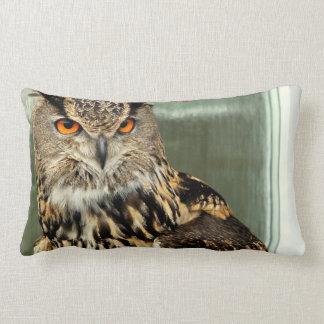 Long Eared Owl Pillow